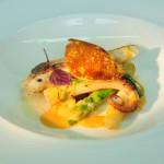 Steinbutt - Calamare - weißer Spargel - Orangenhollandaise