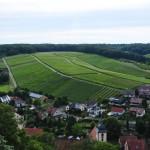 Weingut Neipperg (11)