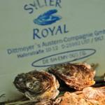 Sylter Royal Austern - Zitronengrasgelee