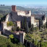 vigneto-castello-soave